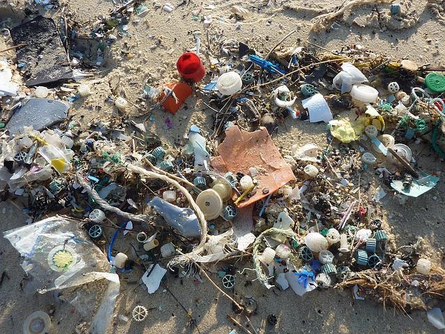 odpad na pláži.jpg